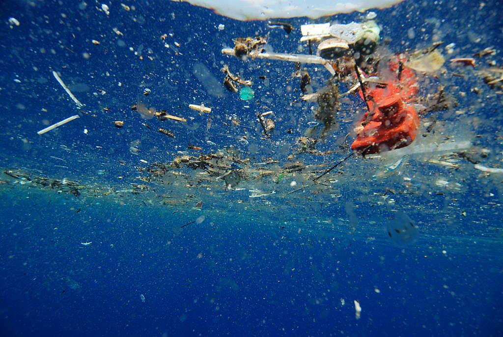 Plastikmüll im Meer: Verwende keine Strohhalme!