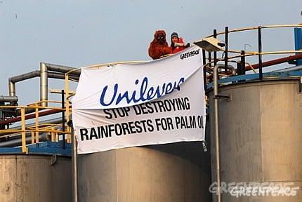 Urwald-Abholzung für Dove-Produkte