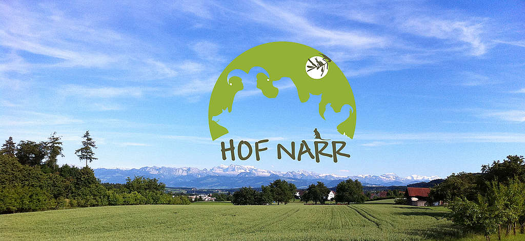 Hofführung und Gespräch über eine klimapositive Landwirtschaft