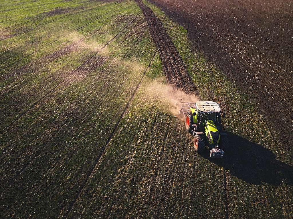 Synthetische Pestizide – worum geht es eigentlich?