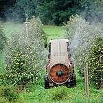Les pesticides de synthèse: de quoi parle-t-on?